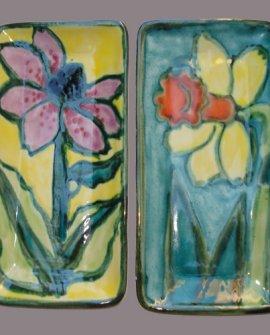 Daffodil Coneflower